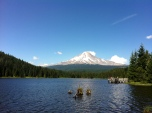 We did a walk around Trillium Lake, with sweeping vistas of Mt. Hood.